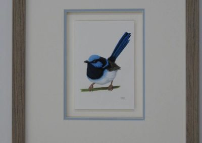 Blue Wren // SOLD