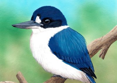 Forest Kingfisher // SOLD