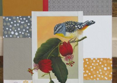 Spotted Pardalote // SOLD