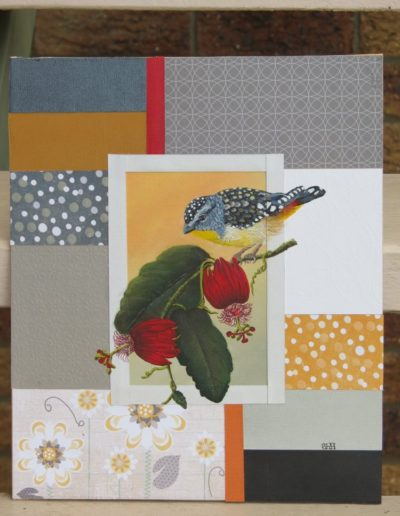 Spotted Pardalote *SOLD*