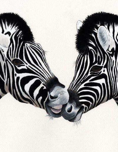Zebra Family Portrait